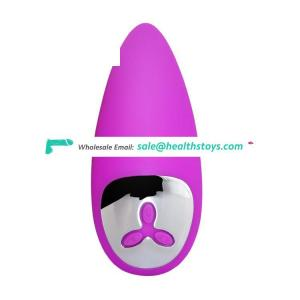 USB Chargeable 12 Frequency Vibrating Egg Mini Bullet Vibrator for Women